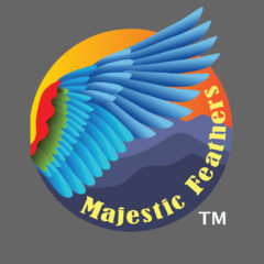 Majestic Feathers Birding Tours